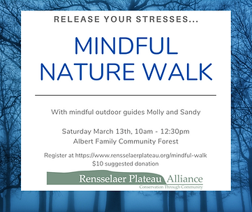 2021-03-13 Mindful Walk.png