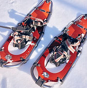 snowshoe-1983133_1280.jpg