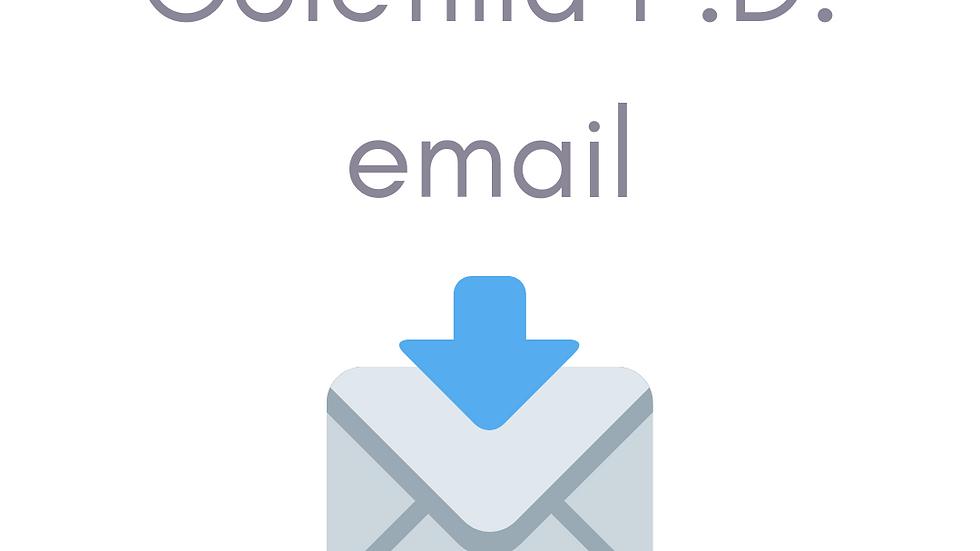 Coletilla de Protección de Datos para email