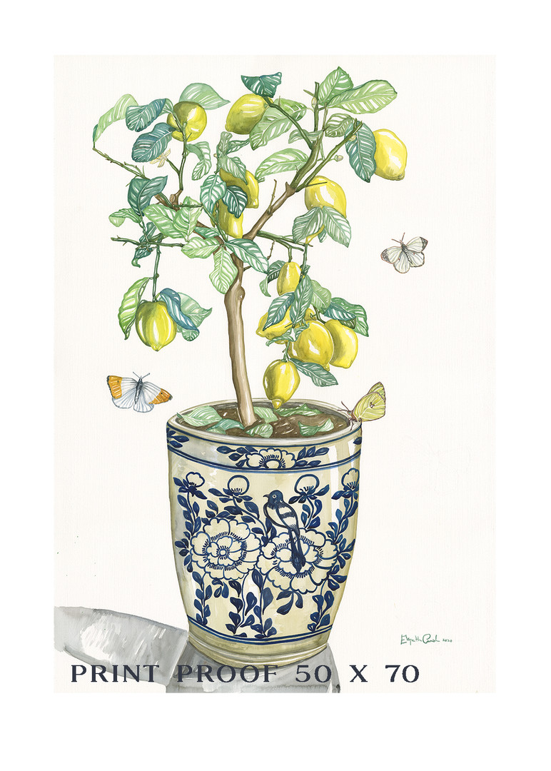 Lemon Tree - 50 x 70 PROOF copy.jpg