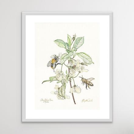 Cherry Blossom Bees - 50 x 60cm