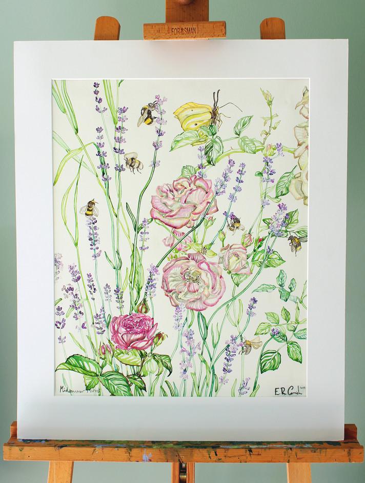 Midsummer Harvest _ 40 x 50cm_ Available