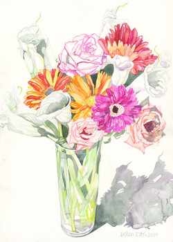Trumpet Lilies & Co