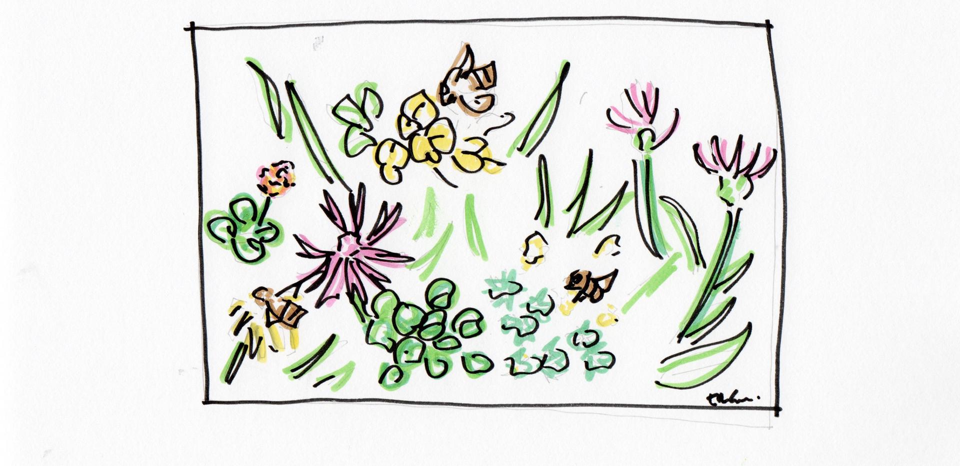 Vild Blommor sketch .jpeg