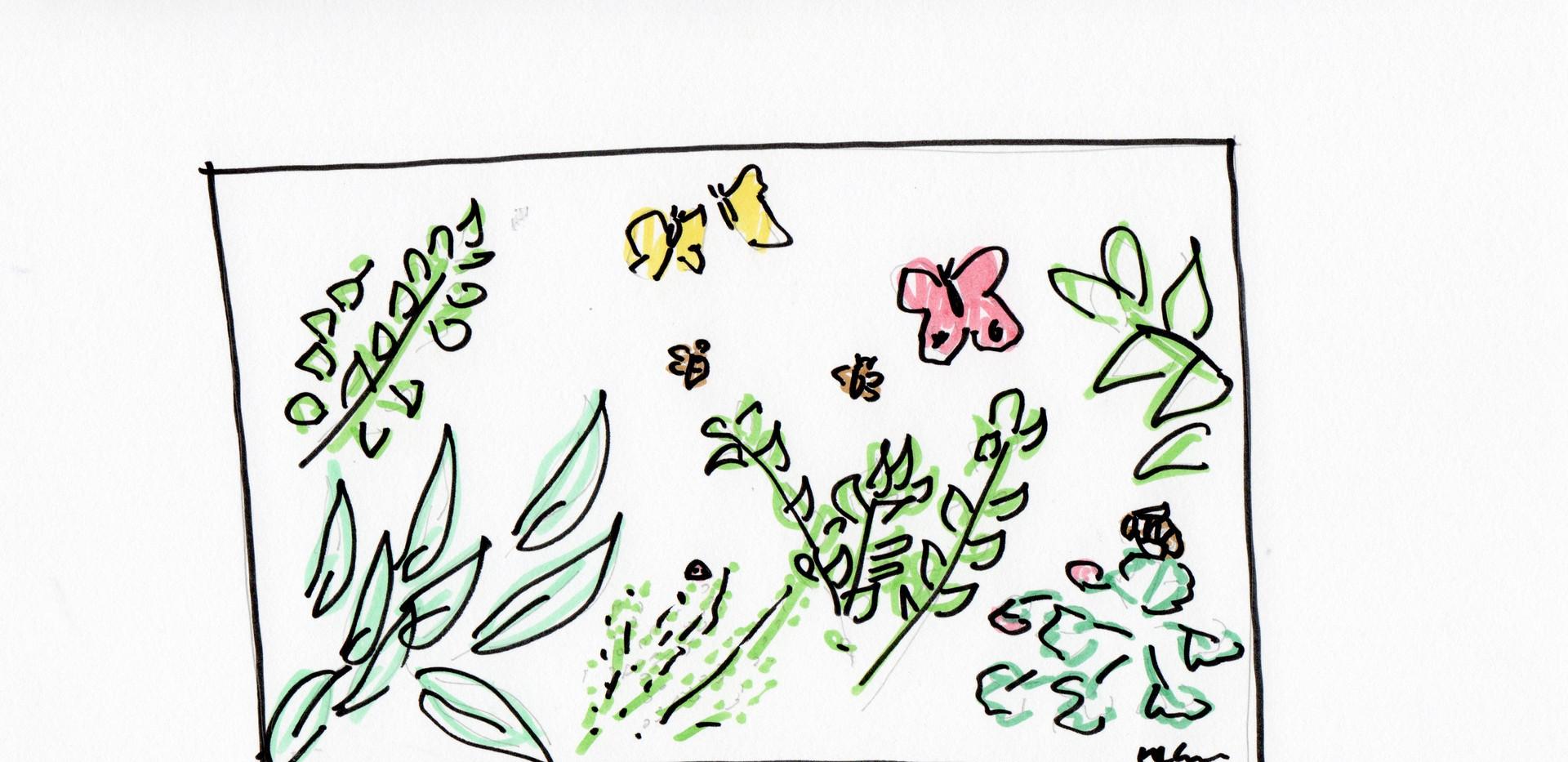 Orttradgard sketch .jpeg