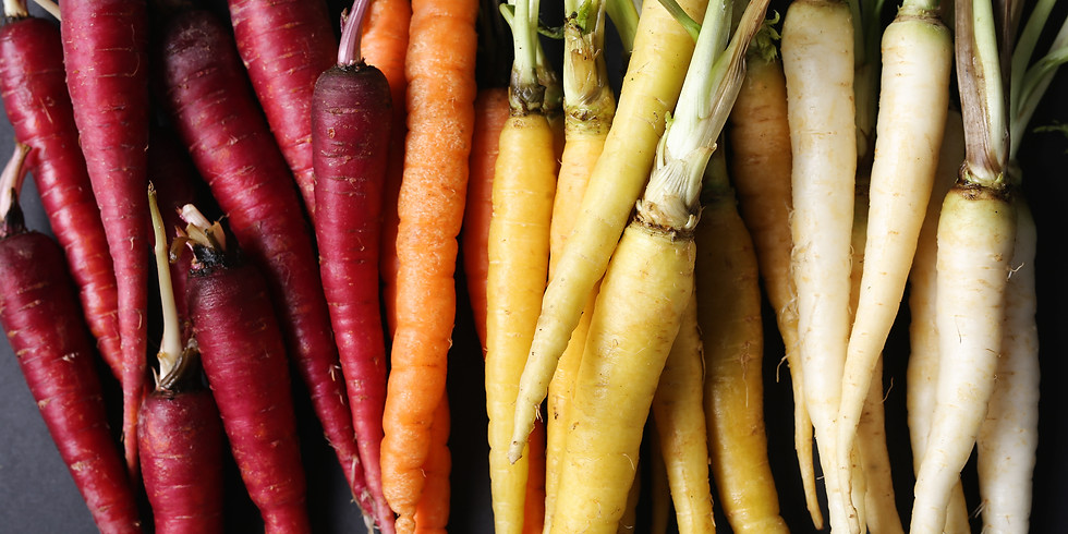 Growing Carrots &  Root Crops