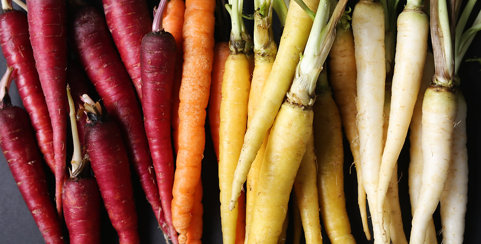 Kaleidoscope Carrots Red, White, Purple, Yellow, Orange Seeds  1/4 oz