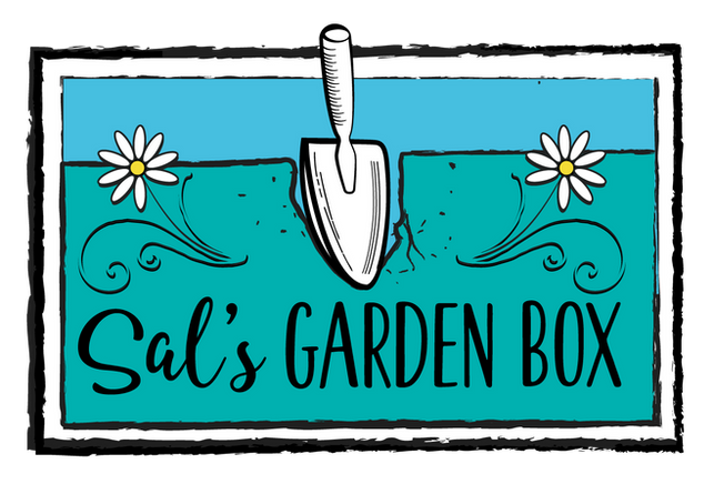Launch of Our Garden Box