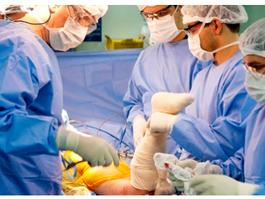 Covid-19: Anvisa atualiza procedimentos de doações e transplantes