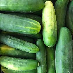 Cucumber water is an easy way to feel fancy #fancypants #cucumberwater #itshotyall 🥒🔥🥒🔥🥒🔥🥒🔥�