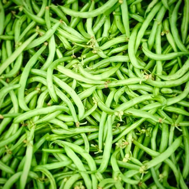 Green bean casserole here we come!!!! #greenbeans #beanscene #beanboozled
