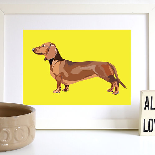 Dachshund Dog Illustrated Art Print