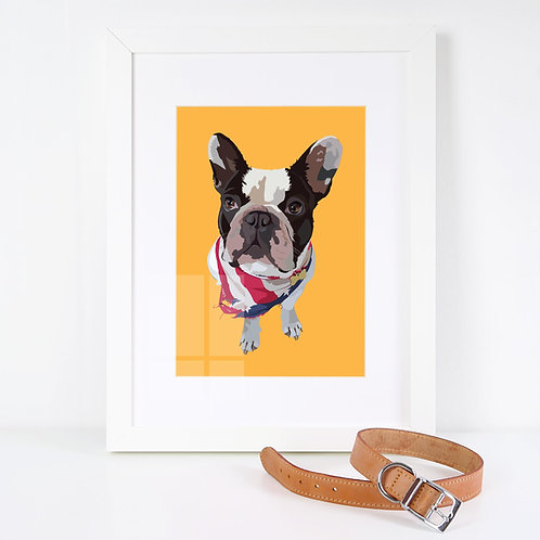 Personalised Pet Portrait with solid colour background