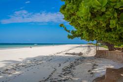 Beach - looking south