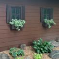 Simple Green Window Box