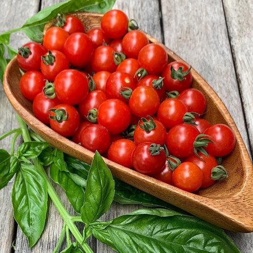 Tomato - Matt's Wild Cherry