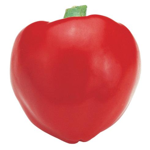 Pepper - Pimiento
