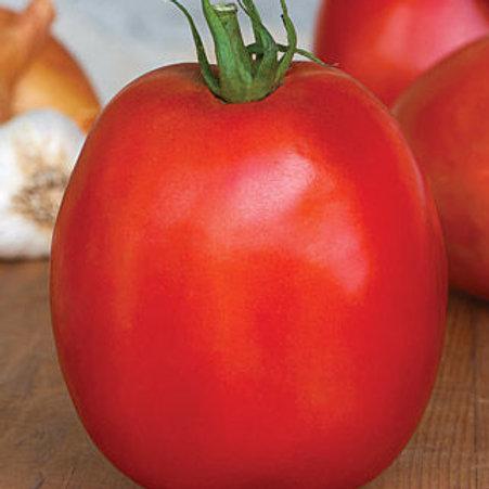 Tomato - Super Sauce