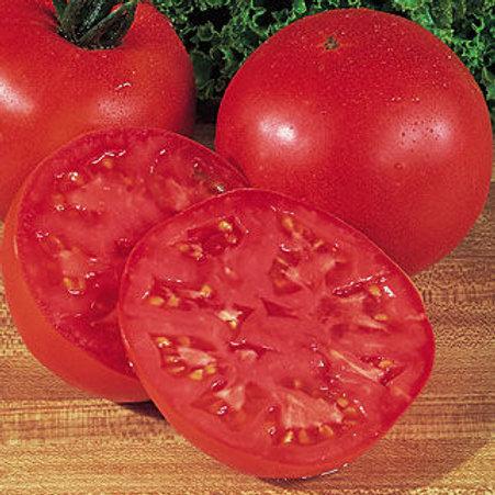Tomato - Big Boy