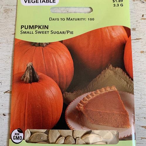 Seed - Pumpkin Pie