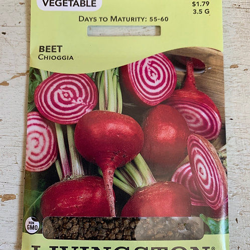 Seed - Beet Chioggia