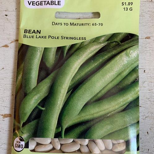 Seed - Bean Pole