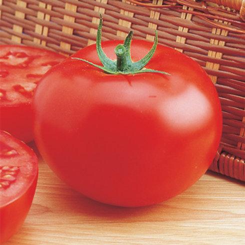 Tomato - Burpee Delicious