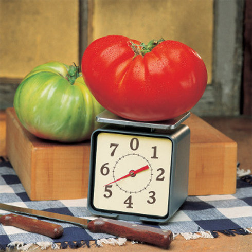 Tomato - Big Zac