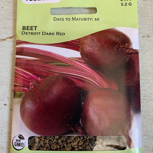 Seed - Beet Detroit Dark Red