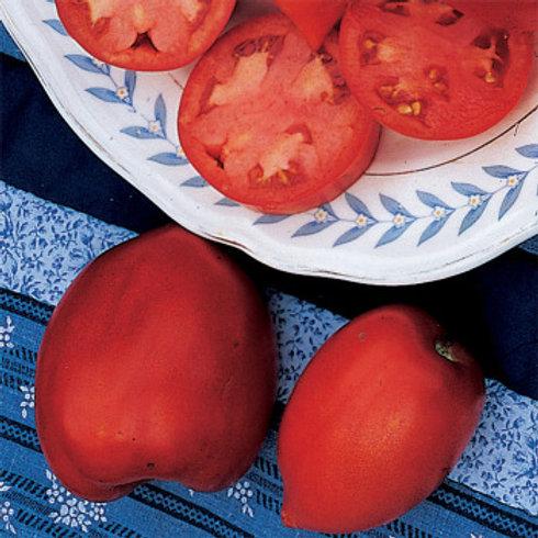 Tomato - Amish Paste