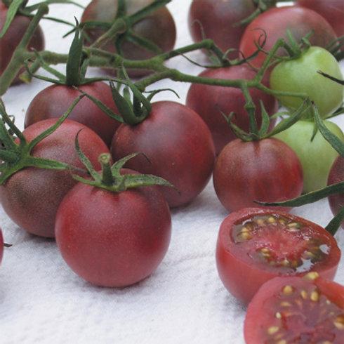 Tomato - Chocolate Cherry