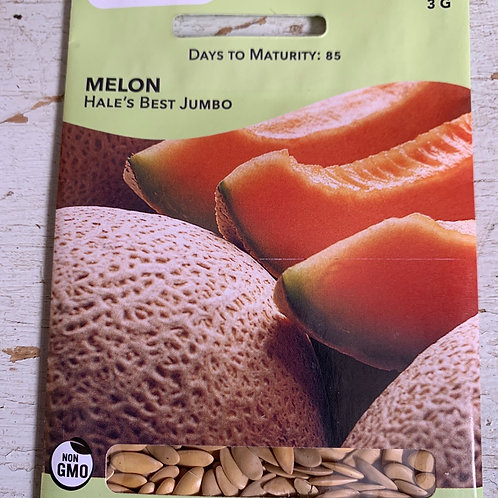 Seed - Melon Cantalop Hales Best