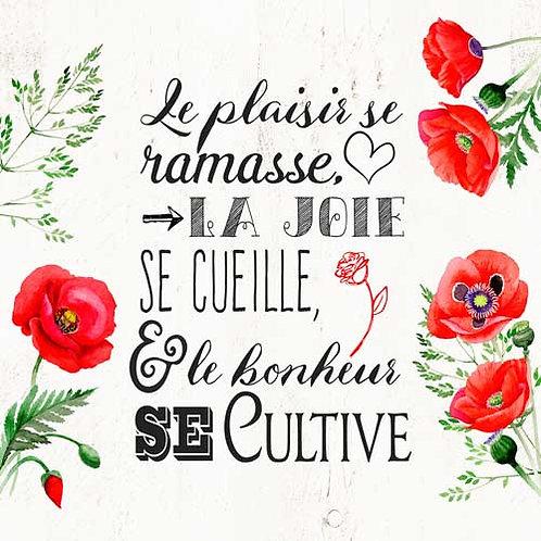 Carte de voeux  x 15  -Le Bonheur se cultive- Réf DA012