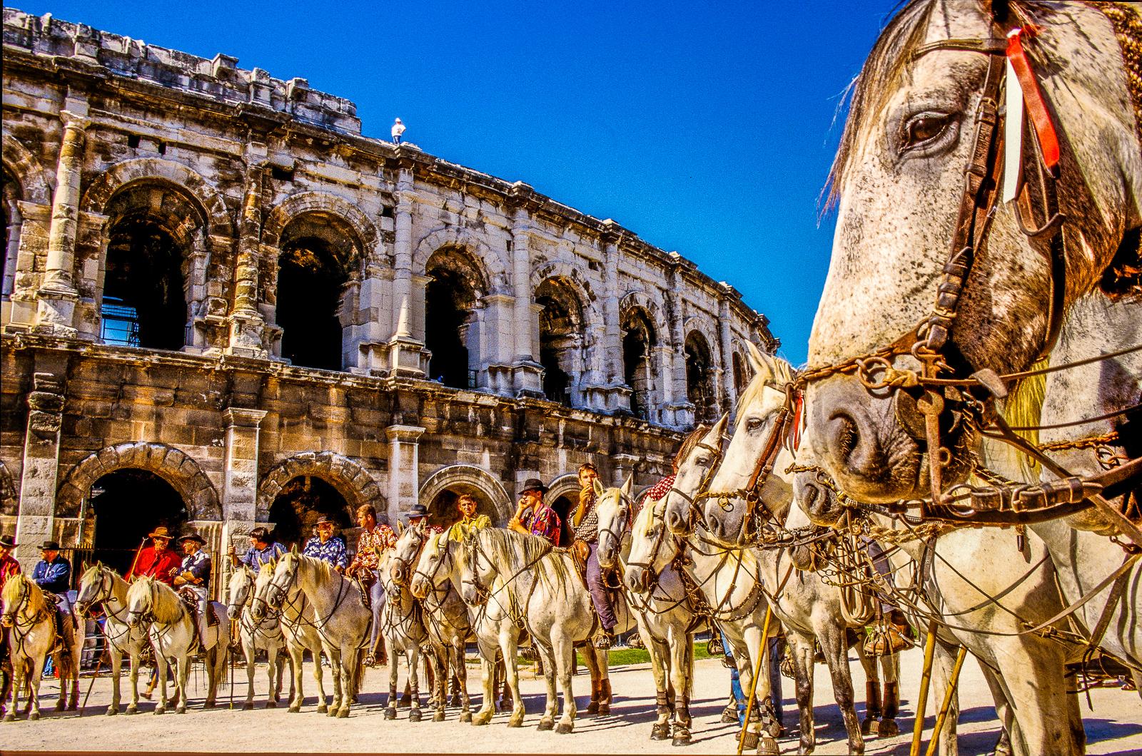 Nîmes - Arênes - Gardians (9)