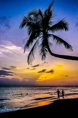 Martinique - Plage des Salines (16)