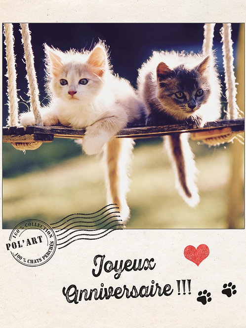"12 Cartes Postales Collection ""Chats Perchés"""