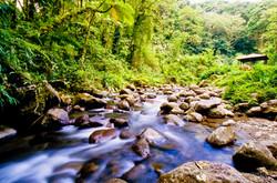 Photographe Guadeloupe