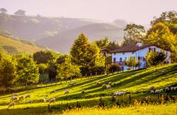 Côte Basque - Arrière Pays (13)