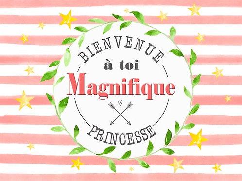 Carte fleuriste x 25 - Naissance Princesse