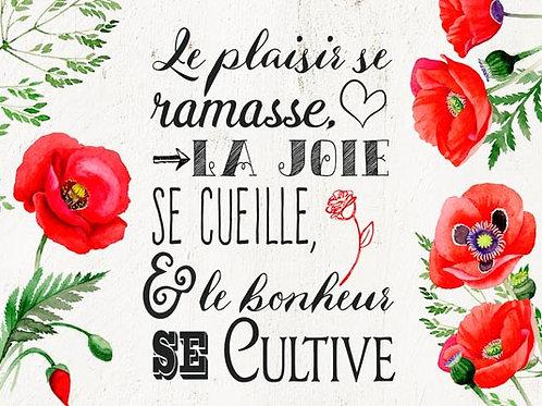 Carte fleuriste x 25 - Le Bonheur Coquelicot