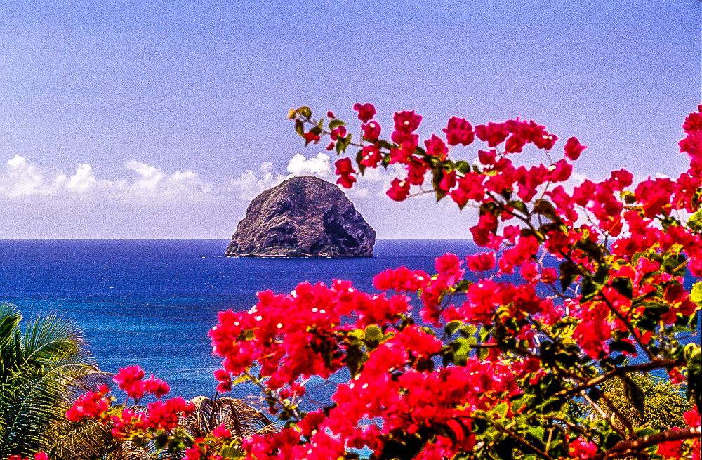 Martinique - Rocher du Diamant (3)