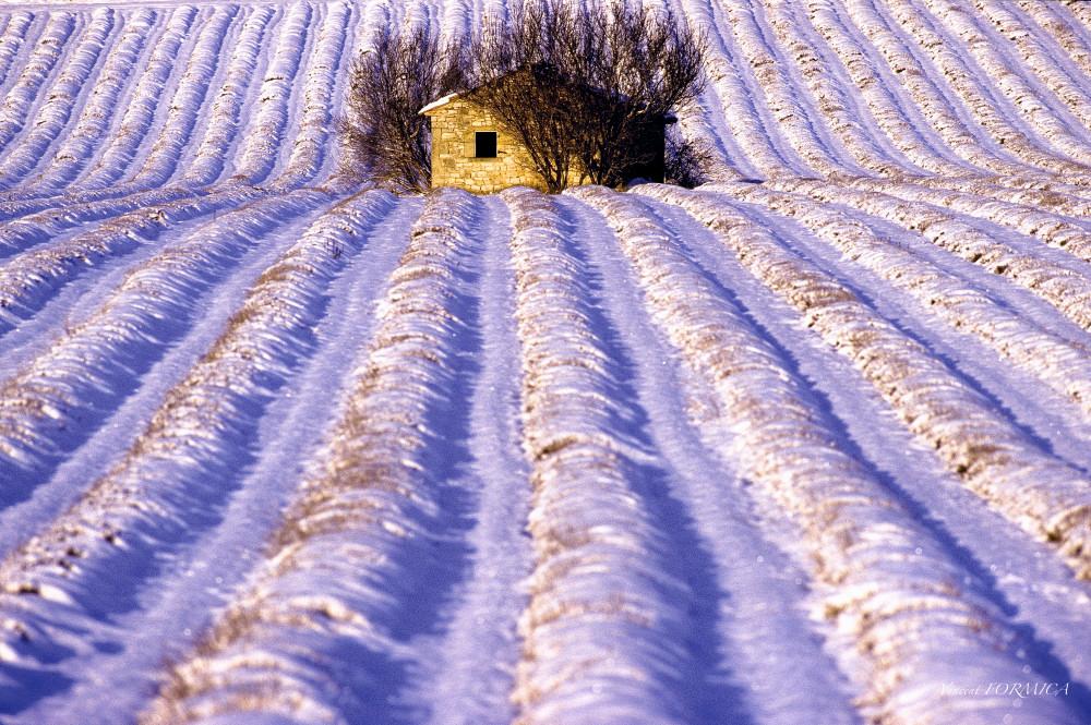 La Provence sous la neige
