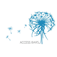 Access-Bars-1.png