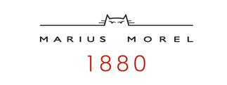Marius Morel 1880.jpg