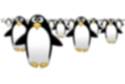 group of penguins.jpg