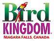 bird kingdom.jpg