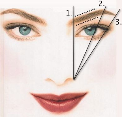 The Beauty Bar - Blog: Perfect Eyebrow Shape