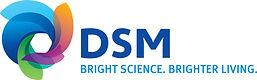 DSM_MasterLogo.jpg