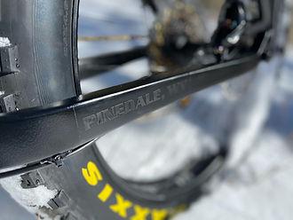 Bison Bicyle Co. Black Dog, fat tire bike