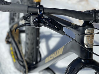 Bison Bicyle Co. Black Dog, fat tire bike, handle bars